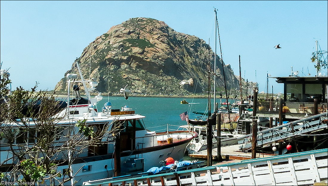 Morro Bay is located in an area that PG&E wants to test for seismic activity. (Photo courtesy Google Images)