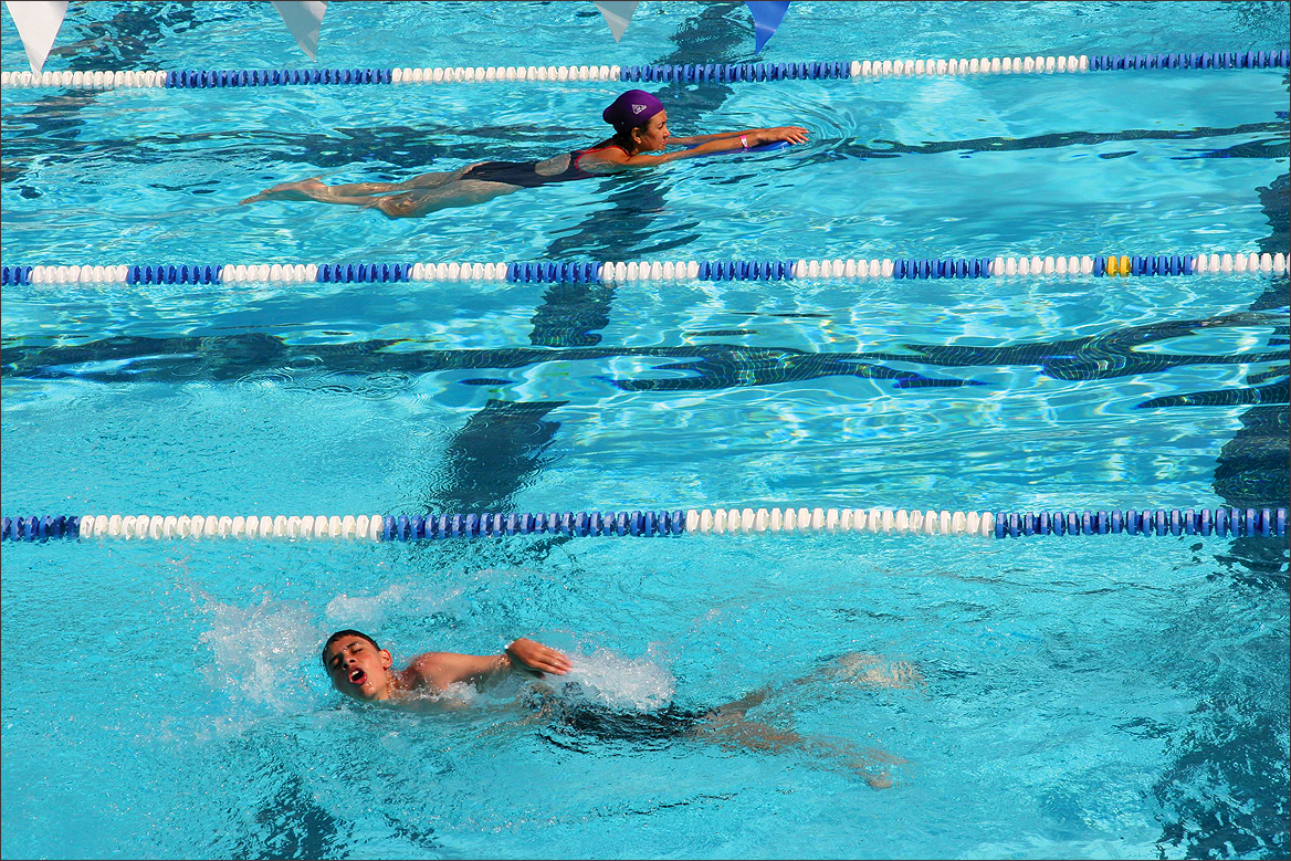 People swim laps at the Santa Monica Swim Center. (File photo)