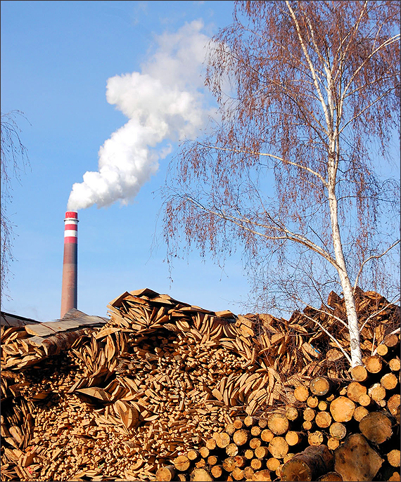 Biomass can be a part of the effort to cut back on fossil fuels, but only if it is harvested and used in ways that reduce pollution, cut emissions and protect forests. Pictured: A biomass-burning power plant. (Photo courtesy iStockPhoto)