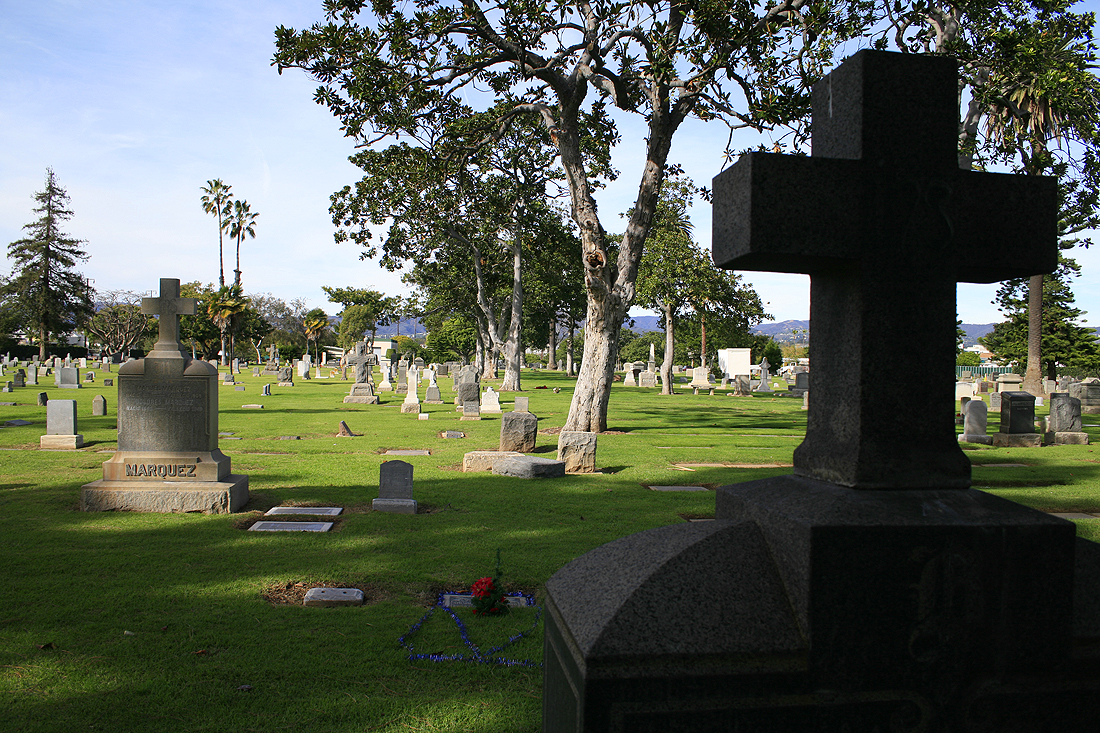Woodlawn Cemetery (File photo)