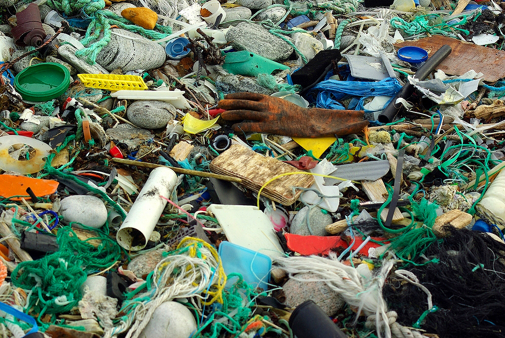 YUCK: Contrary to popular myth that most ocean pollution is oil spilled from ships, most of it is land-based litter. Pictured: Plastic litter on a beach, before clean-up. (Photo courtesy Bo Eide/Flickr)