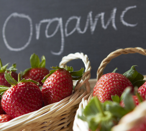 BENEFITS: Changing perceptions about just how much healthier organic foods are than non-organic foods are impacting the growth of the sector. But even if the personal health benefits of eating organic aren't significant or clear, the environmental advantages of organic agriculture still make the practice well worth supporting. (Photo courtesy iStockPhoto)