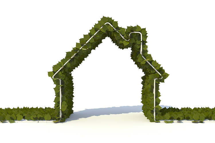 There has never been a better time to renovate green, given the abundance of Earth-friendly building material choices as well as contractors well-versed in energy- and resource-efficiency. (Photo courtesy Stockmonkeys.com)