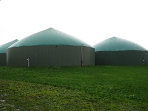 Diverting even just a portion of the world's food waste to waste-to-energy (WTE) systems could free up large amounts of landfill space while powering our vehicles and heating our homes, and thus putting a significant dent in our collective carbon footprint. Pictured: Three Anaerobic Digestion WTE tanks in Fenville, Mich. (Photo courtesy eXtension Farm Energy)