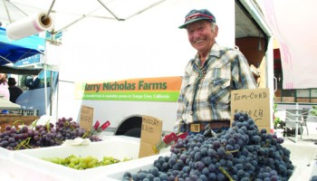 WW II Veteran Harry Nicholas, 91, has been selling his grapes at the Santa Monica Farmers' Market since it started. (Paul Alvarez, Jr. editor@smdp.com)