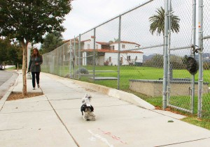 FUTURE PARK? A woman walks her dog in front of Mt. Olivet Reservoir on Wednesday. (Daniel Archuleta daniela@smdp.com)