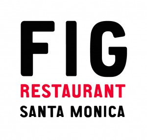 fig_verticallogo