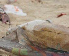 Trash piled up on Santa Monica Beach after a recent rain storm. (File photo)
