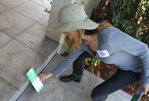 THE MESSAGE: Sarah Blanch was out Friday handing out flyers hoping to curb underage drinking during St. Patrick's Day. (Kevin Herrera kevinh@smdp.com)