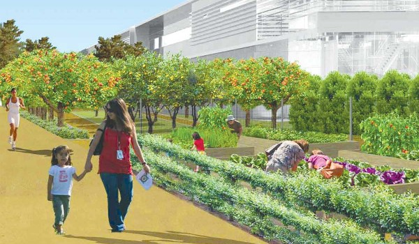 GROWING THE COMMUNITY: Plans for the new Buffer Park include a learning garden. (Rendering courtesy City of Santa Monica)